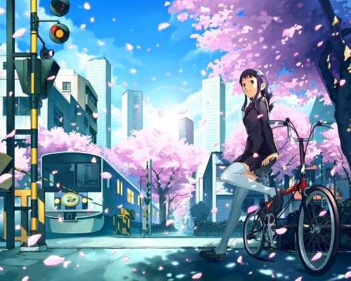 Anime Character in the Spring Cherry Blossoms